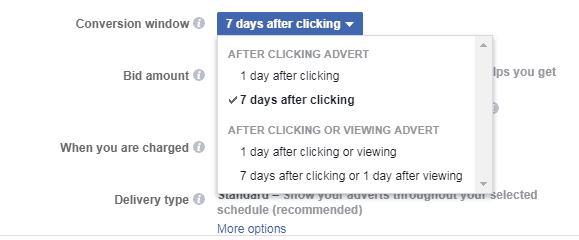 Facebook Conversion Window